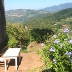TRAVEL: A Week In Tuscany