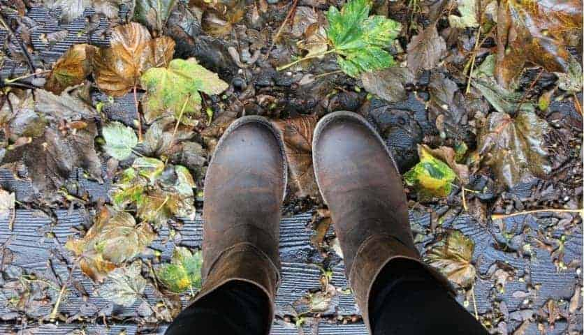 STYLE SHOOT: Autumn/ Winter Leaves With Sorel