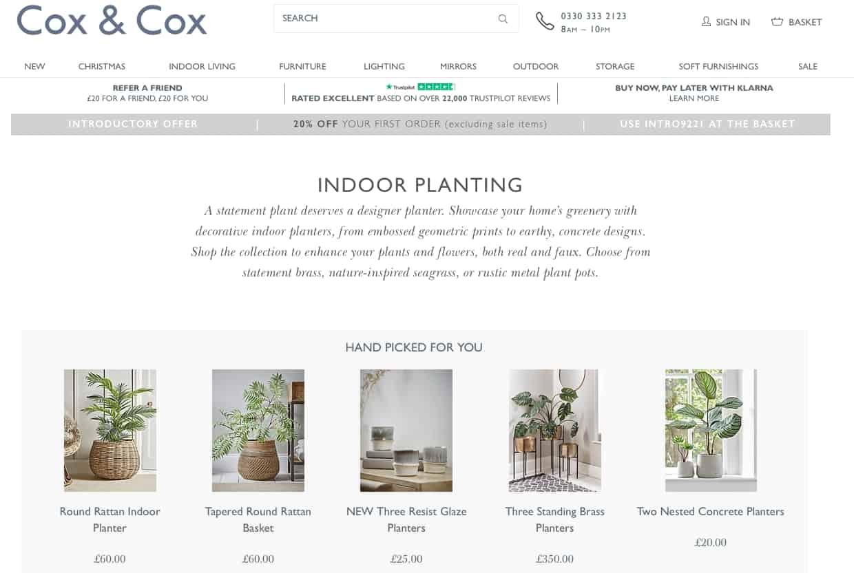 plants and pots at Cox & Cox